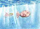 Siguiendo al pez gordo