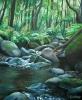 Agua y rocas en laurisilva