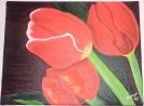 Trio Tulipanes